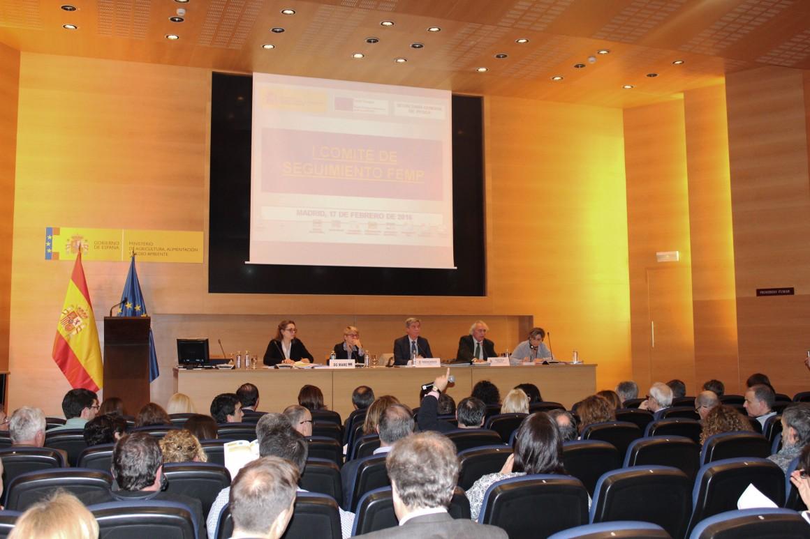 El director general de Ordenación Pesquera preside el primer Comité de Seguimiento del Fondo Europeo Marítimo y de Pesca (FEMP)