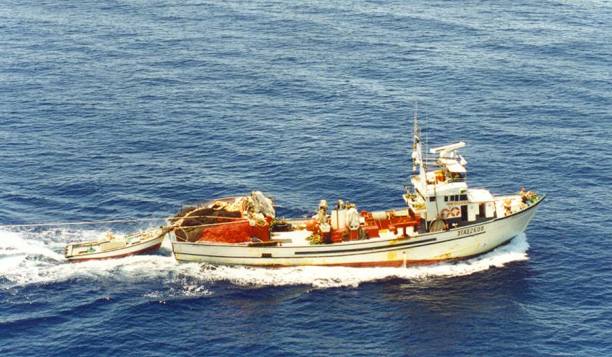 Andrés Hermida: Aún existe margen de actuación para corregir la situación de desequilibrio en las pesquerías del Mediterráneo