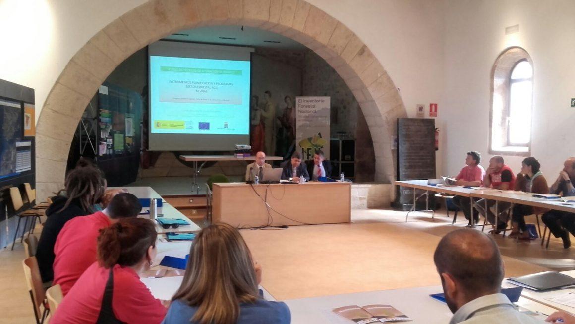 El Ministerio de Agricultura, Alimentación y Medio Ambiente organiza un curso sobre técnicas de resinación de pinares