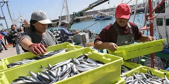 El Consejo de Ministros aprueba la regulación de subvenciones para el desarrollo de nuevos mercados y la promoción de productos de la pesca y la acuicultura