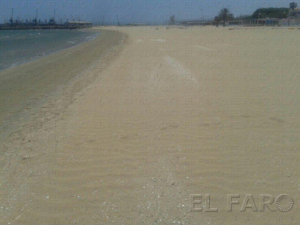 Guelaya celebra mañana el 'Clean Up the Med' con la limpieza del Dique Sur