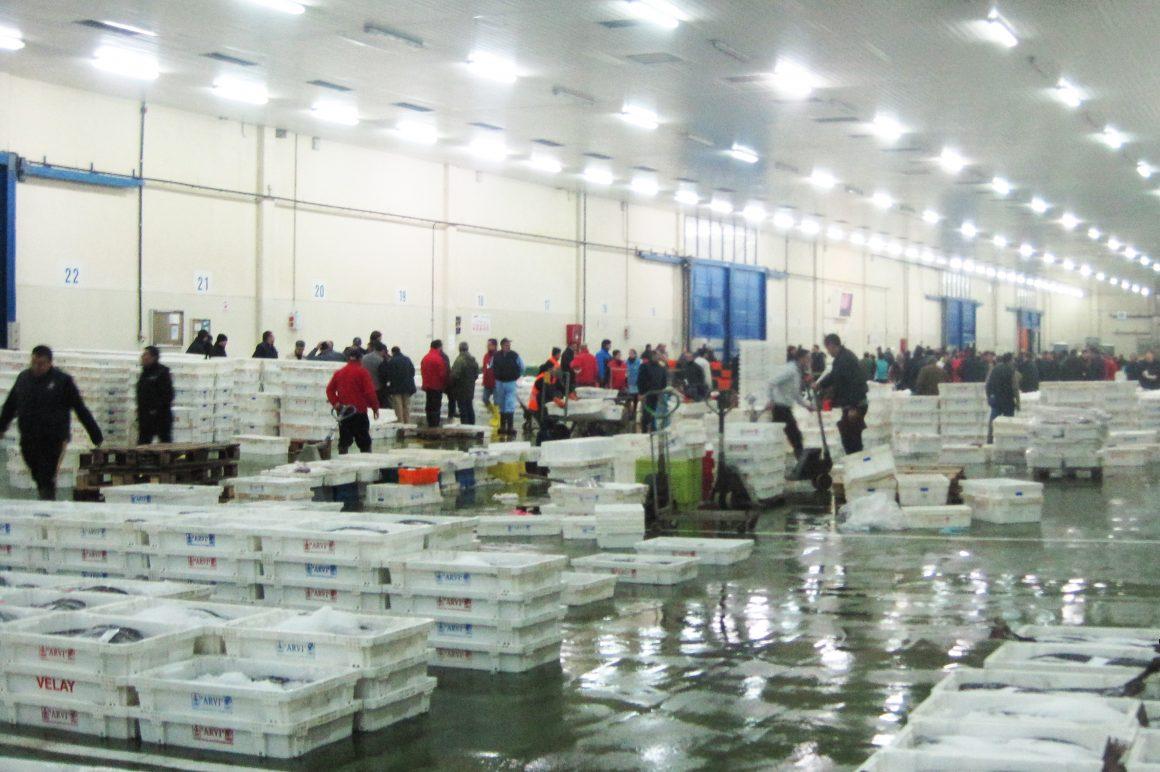 El Ministerio de Agricultura, Alimentación y Medio Ambiente convoca ayudas para el desarrollo de nuevos mercados y campañas de promoción de los productos de la pesca y la acuicultura para 2016