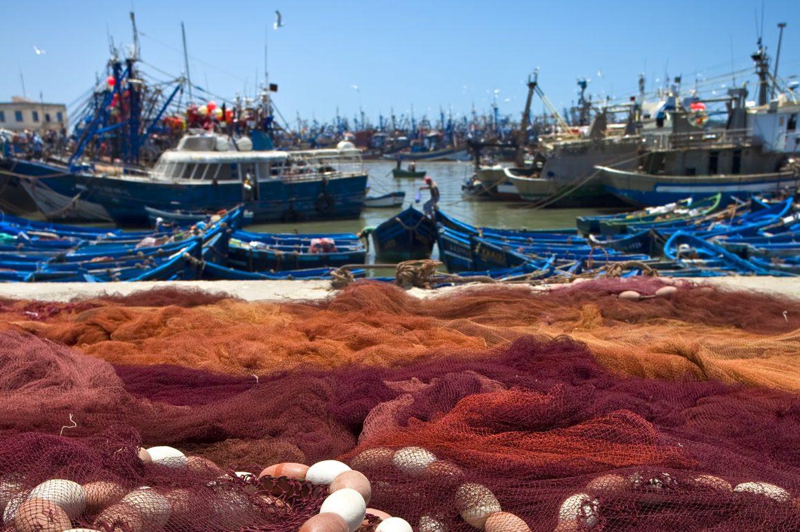 El Ministerio de Agricultura, Alimentación y Medio Ambiente continúa la lucha contra la pesca ilegal