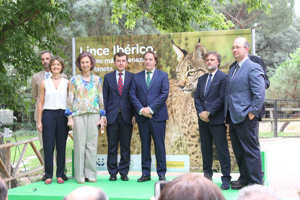 García Tejerina: La conservación del lince ibérico es uno de los máximos exponentes en la historia de la protección de la naturaleza en España
