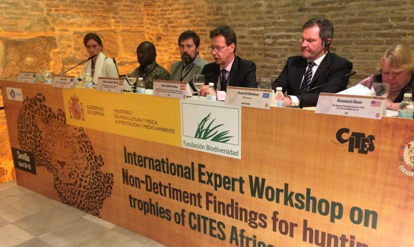 El Ministerio de Agricultura y Pesca, Alimentación y Medio Ambiente organiza un taller internacional para lograr un acuerdo entre cazadores, científicos y ecologistas en la lucha contra el tráfico ilegal de especies africanas.