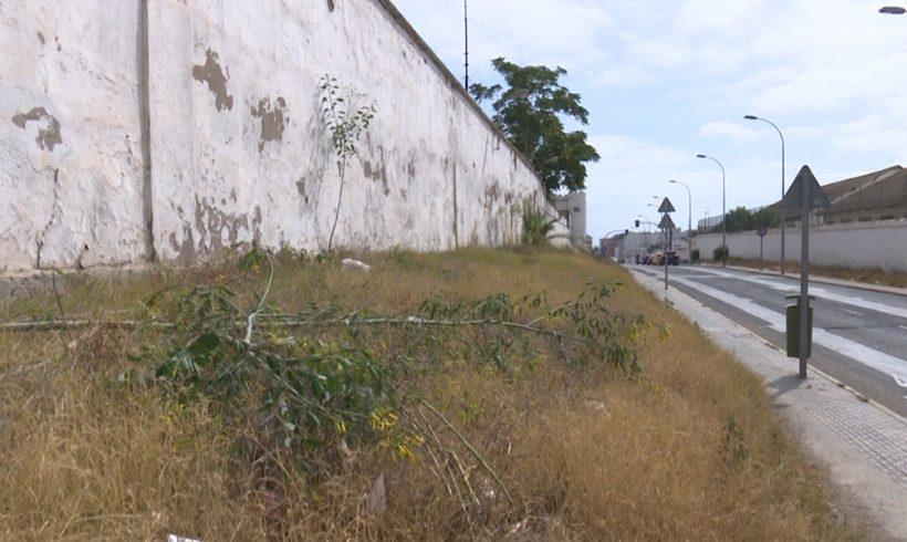 Medio Ambiente inicia la mejora de las aceras de la Calle Hospital Militar