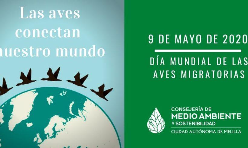 Hoy 9 de mayo se celebra el Día Mundial de las Aves Migratorias