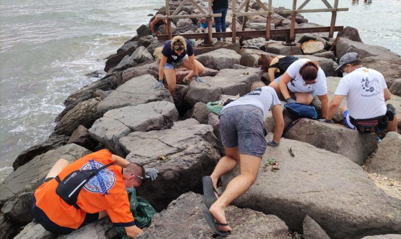 Medio Ambiente acomete una intensa limpieza en el dique de la playa de Los Cárabos