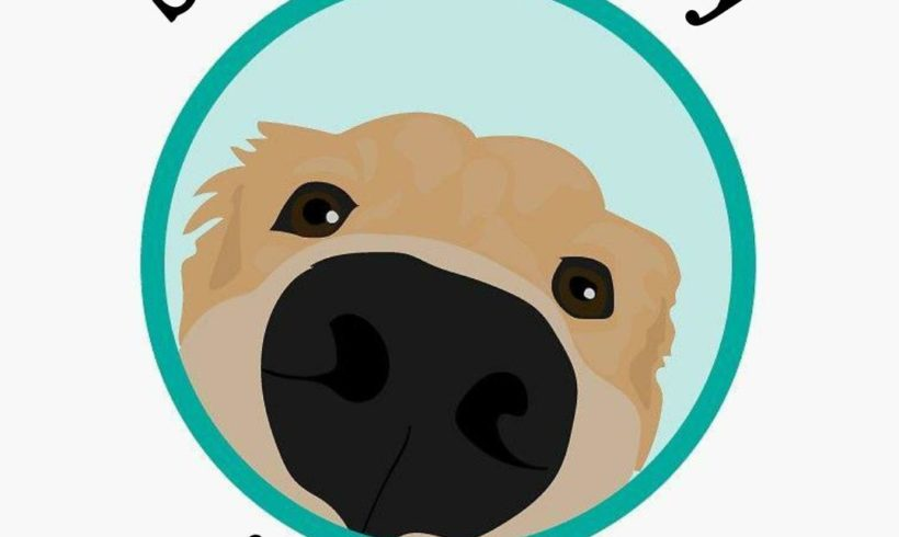Medio Ambiente pone en marcha el programa piloto 'Pet Friendly Melilla' para la atención a mascotas